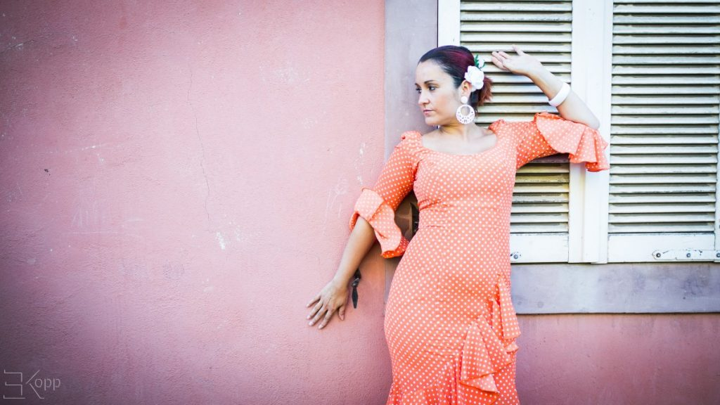 photo flamenco belfort