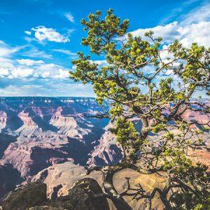 Grand Canyon landscape etienne kopp USA Amerique Ouest américain