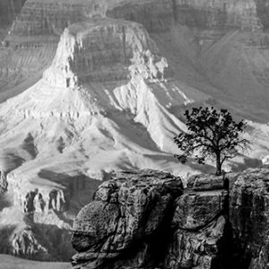 Grand Canyon USA etienne kopp photographe landscape