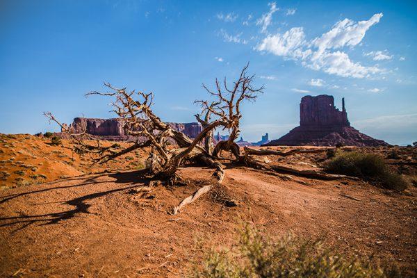 photo mythique Grand Canyon USA etienne kopp photographe